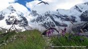 Nice walks near Elbrus